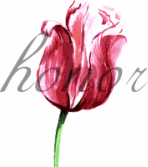 HONOR FLOWERS